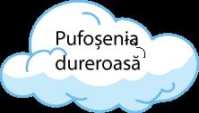 pufosenii-02